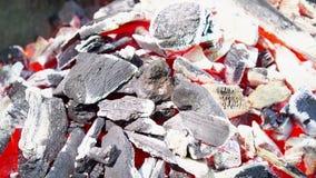 Textura quente de incandescência do fundo do close-up dos carvões amassados do carvão vegetal video estoque