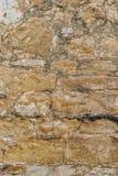Textura rústica ou fundo da parede de pedra da rocha do shell Fotos de Stock