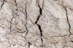 Textura rachada seca da terra Fotografia de Stock