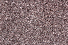 Textura real de la arena y de la piedra para las paredes Fotografía de archivo libre de regalías