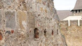 Textura retra del fondo de la pared de piedra de la cantidad almacen de metraje de vídeo