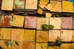 Textura retro rachada do fundo do assoalho de telhas Foto de Stock Royalty Free