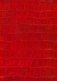 Textura roja de la imitación del cuero del reptil Fotos de archivo