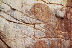Textura roja de la piedra caliza Imagen de archivo