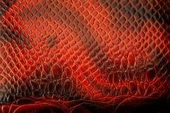 Textura roja del cuero del pitón Fotografía de archivo libre de regalías