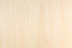 Textura rubia de madera Imagen de archivo libre de regalías