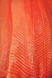 Textura Salmon Fotografia de Stock Royalty Free