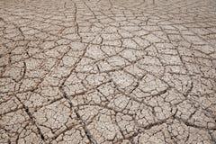 Textura seca da terra Fotos de Stock