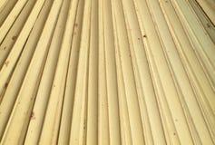 Textura seca de las hojas de palma Fotos de archivo