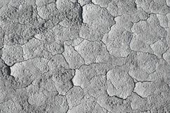 Textura seca del fango Imagen de archivo