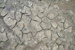 Textura seca del fango Imagen de archivo libre de regalías
