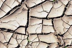 Textura seca del fondo de la tierra Imagenes de archivo