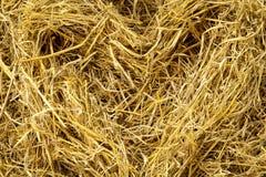 Textura seca do fundo da palha Pacotes da palha de cereal para a vaca e o cavalo Fotografia de Stock