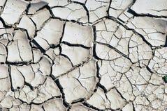 Textura seca do fundo da terra Foto de Stock