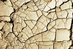 Textura seca do fundo da terra Fotos de Stock