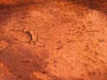 Textura seca y marrón del suelo Fotos de archivo