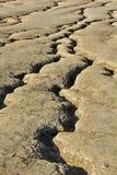 Textura secada da lama Imagem de Stock
