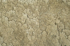 Textura secada dois da lama Fotos de Stock