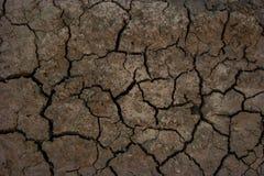 Textura sem água seca da lama Foto de Stock Royalty Free
