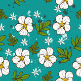 Textura sem emenda com flor branca. Ilustração Royalty Free