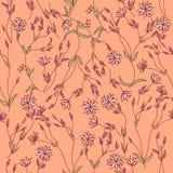 Textura sem emenda com flores e folhas ilustração royalty free