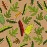 Textura sem emenda com folhas Ilustração do Vetor