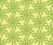 Textura sem emenda com motivo da planta Imagens de Stock Royalty Free
