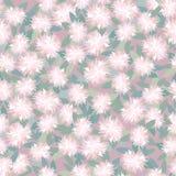 Textura sem emenda com ornamento floral Imagem de Stock