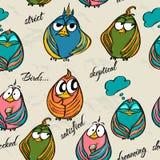 Textura sem emenda com pássaros engraçados. Fotos de Stock Royalty Free