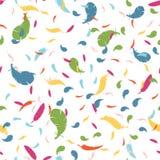 Textura sem emenda com penas coloridos penas coloridas em um backgro branco Imagem de Stock
