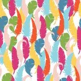 Textura sem emenda com penas coloridos penas coloridas em um backgro branco Imagens de Stock Royalty Free