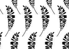 Textura sem emenda com teste padrão floral Fotos de Stock Royalty Free