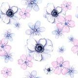 Textura sem emenda da aquarela de flores e de vegetação da anêmona Foto de Stock Royalty Free