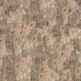 Textura sem emenda da casca de árvore Fotos de Stock