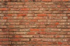 Textura sem emenda da parede de tijolo Imagem de Stock