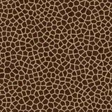 Textura sem emenda da pele do Giraffe Foto de Stock Royalty Free