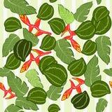 Textura sem emenda da planta malaia 2 Ilustração Stock