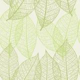 Textura sem emenda das folhas ilustração royalty free