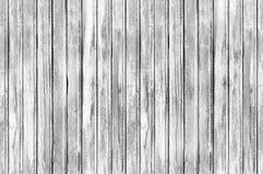 Textura sem emenda do fundo da parede de madeira Imagens de Stock