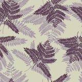 Textura sem emenda do fundo do design floral Fotos de Stock