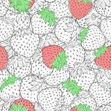 Textura sem emenda do teste padrão da morango do vetor ilustração do vetor