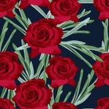 Textura sem emenda floral do teste padrão da rosa do vermelho Imagem de Stock