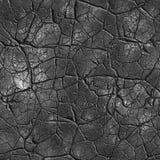 Textura sem emenda rachada Fotos de Stock Royalty Free