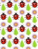 Textura sem emenda - uma joaninha, folha, flor Imagem de Stock Royalty Free