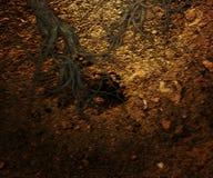 Textura subterráneo del fondo fotografía de archivo libre de regalías