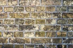 Textura suja da parede de tijolo da textura Fotos de Stock Royalty Free