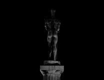 Textura surpreendente da estátua na noite Foto de Stock