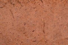 Textura 4696 - terra arenosa vermelha Foto de Stock Royalty Free
