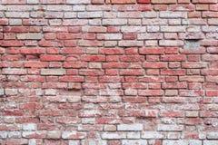 Textura tijolo Pode ser usado como um fundo Foto de Stock