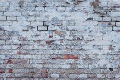 Textura tijolo Pode ser usado como um fundo Imagens de Stock Royalty Free